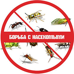 Борьба с насекомыми