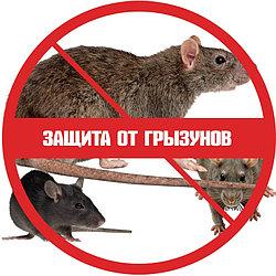 Защита от грызунов