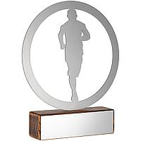 Награда Acme, бег, фото 1