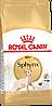 Royal Canin Sphynx сухой корм для кошек породы сфинкс