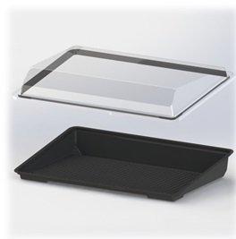 """Крышка для контейнер ДЛЯ СУШИ (витрина) """"РАДУГА ВКУСА"""", внеш. 245х161х35, внутр. 224х139х31мм, прозрачный, ПС, 510 шт, фото 2"""