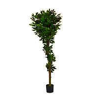 Декор дерево фикус