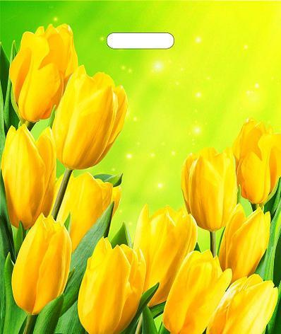 """Пакет (мешок) проруб. ПВД 45х38см, 60мкм, """"Солнечные тюльпаны"""", 50 шт, фото 2"""