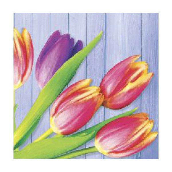 "Салфетки 33х33см, 2 сл., ""Тюльпаны на синем"", Бумага, 20 шт"