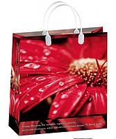 Пакет подарочный (320x420 мм) мягкий пластик BAL 83, 20 шт