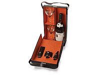Набор аксессуаров для вина Delphin