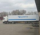 Реклама на транспорте брендирование автомобилей, фото 5