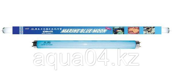 Marine Blue Moon 30W