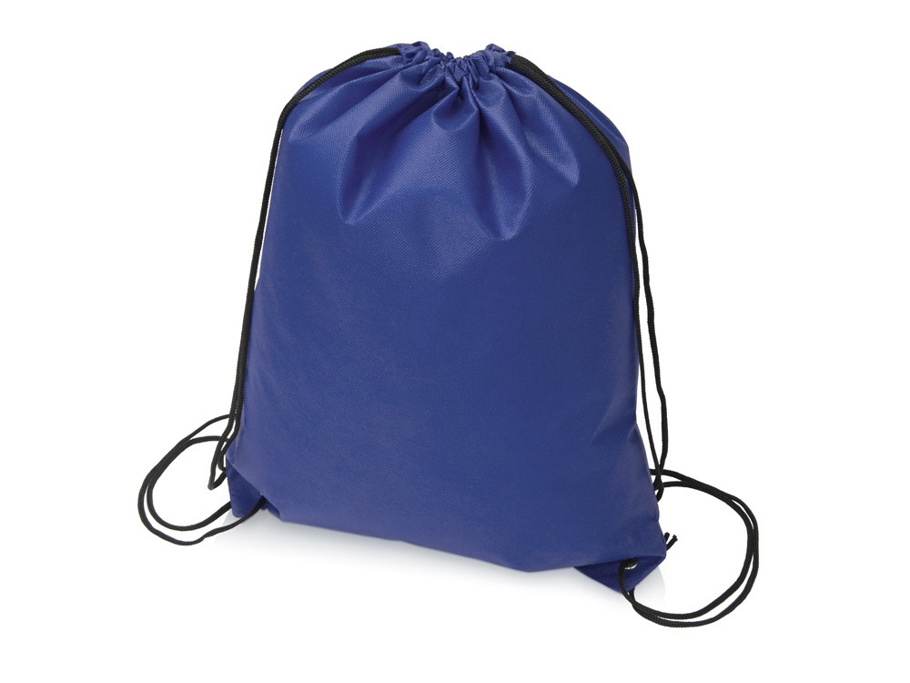 Рюкзак-мешок Пилигрим, синий (артикул 933912)