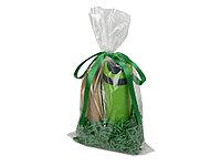 Подарочный набор Tea Cup Plus с чаем, зеленый, фото 1