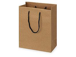 Пакет подарочный Kraft S, 23x30x12 см (артикул 9911309)