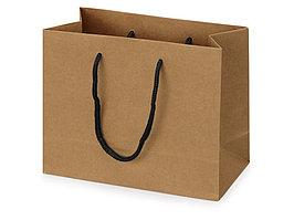 Пакет подарочный Kraft XS, 23x19x10 см (артикул 9911319)
