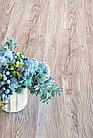 Кварц-виниловая плитка Alpine Floor Секвойя Коньячная ЕСО6-2, фото 3