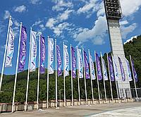 Изготовление флагов с логотипом, фото 1