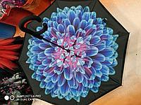Зонт-наоборот, голубая хризантема