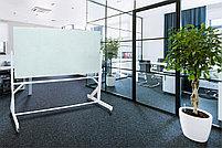 Поворотная стеклянная доска 1000*2000мм., на колесиках ASKELL, фото 3