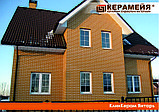 Клинкерный кирпич Янтарь Керамейя 250х60х65, фото 4