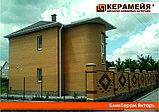 Клинкерный кирпич Янтарь Керамейя 250х60х65, фото 2