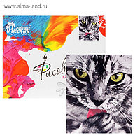 Картина по номерам «Кот»