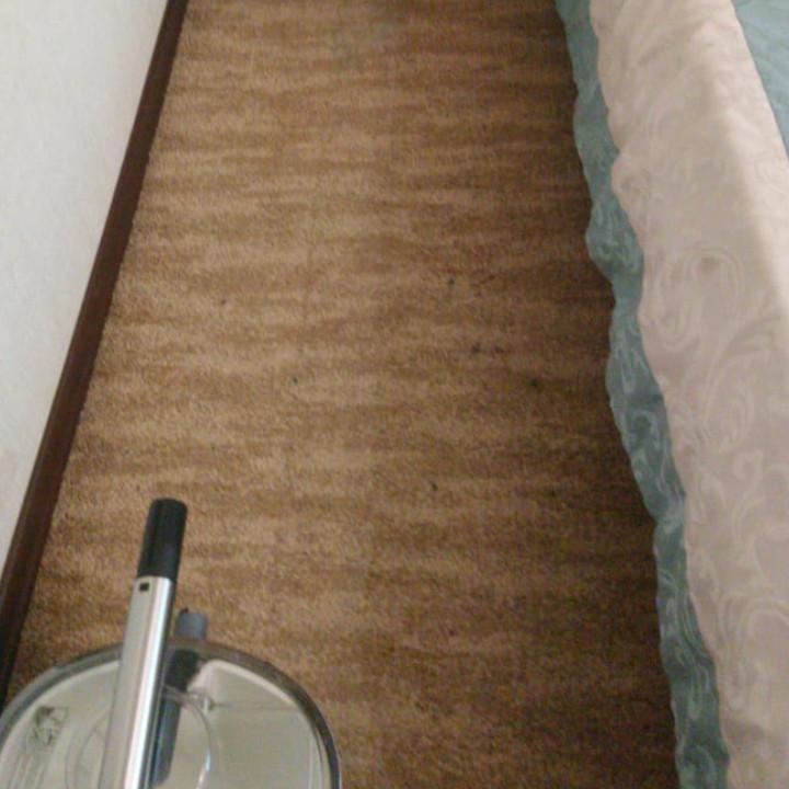 Чистка ковровых покрытий на дому