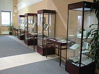 Музейная витрина, фото 1