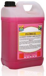 Floreal  Для полов и моющихся поверхностей, антистатик