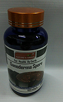 Капсулы Ганодерма - Ganoderma Spore 100 кап.