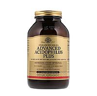 Solgar, Улучшенный Ацидофилин Плюс (Ацидофилус плюс), 240 капсул