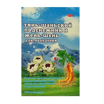 Капсулы для похудения  Тянь-шаньский подснежник и жень-шень 40шт