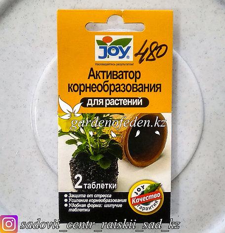 Активатор корнеобразования для растений JOY, 2 таблетки., фото 2