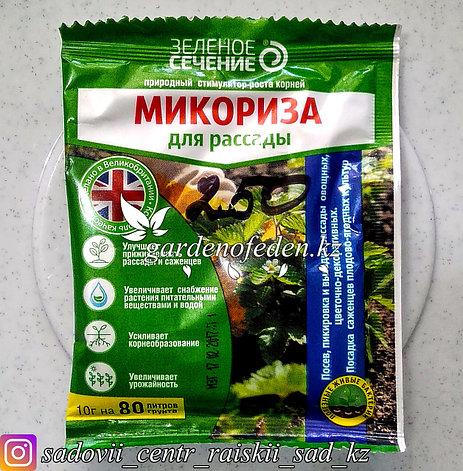 """Средство для рассады Зеленое сечение """"Микориза"""", 10 гр., фото 2"""
