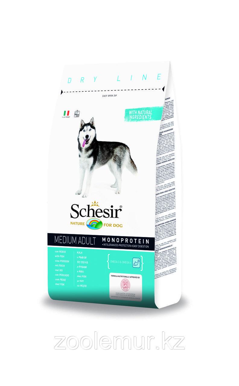 SCHESIR сухой корм 3кг для собак средних пород с Рыбой