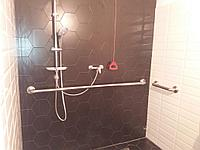 Поручень для санузла и ванной