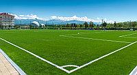 Искусственный газон для декора и футбольных полей 50 мм