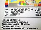 Печать на баннере MSD 510 гр. (матовый) Литой, фото 4