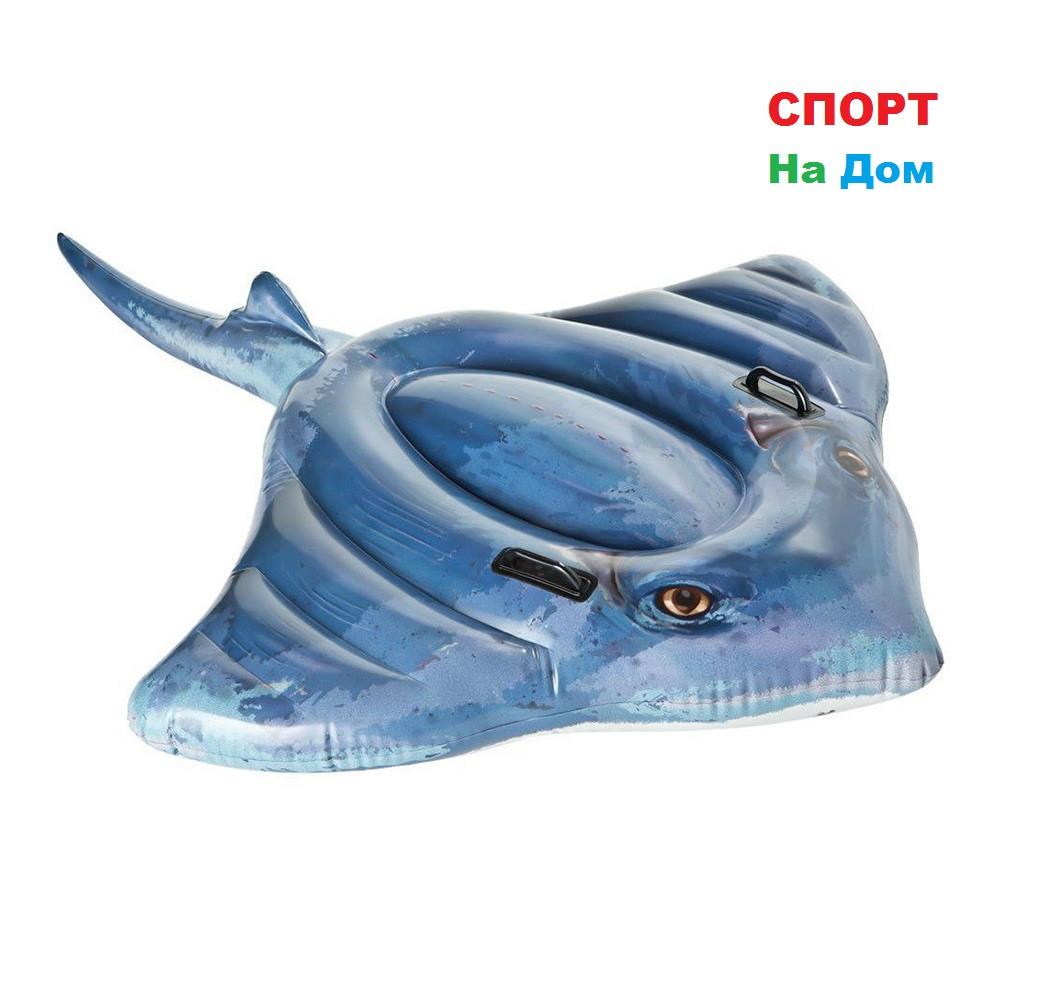 """Надувной плотик """"Скат"""" Intex 57550 (188 х 145 см)"""