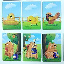 Развивающие карточки - Последовательность, фото 3