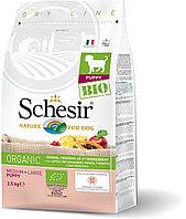 Schesir Bio сухой корм для щенков средних и крупных пород, домашняя птица 2.5кг