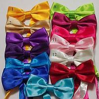 Бабочка-галстук / Карнавальные бабочки.