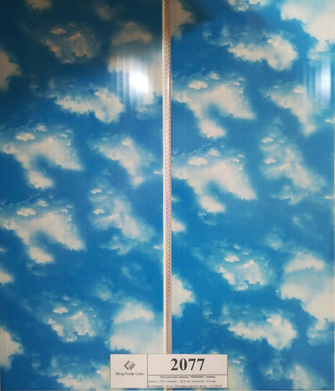 Декор панель потолочный (2077)