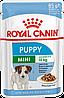 Влажный корм для щенков мелких пород от 2х до 10 месяцев Royal Canin Mini Puppy