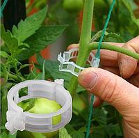 Клипса (для томатов), диаметр 24 мм, фото 1