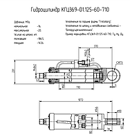 Гидроцилиндр стрелы ТО-18