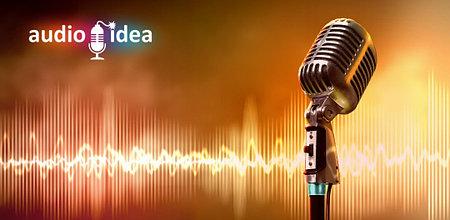 AUDIO IDEA: создание джинглов и аудио-рекламы