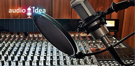 AUDIO IDEA: дикторская озвучка роликов