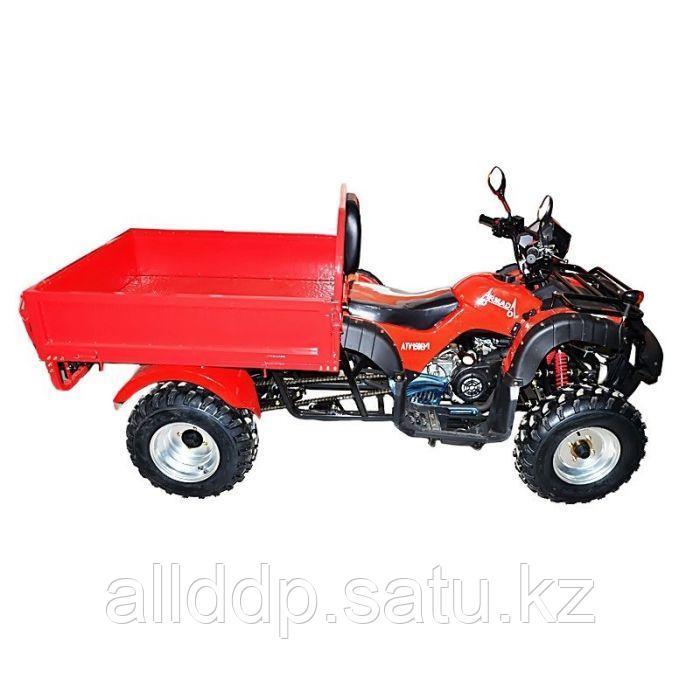 Квадроцикл Armada ATV 200В-1