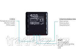 Ruptela GPS/GLONASS/GSM FM Eco4 Light S автомобильный GPS трекер
