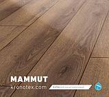 Mammut Дуб столичный светлый D2800 1233 4V, фото 4