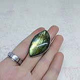 Кольцо с лабрадором, 38х20мм, фото 2