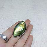 Кольцо с лабрадором, 38х20мм, фото 4